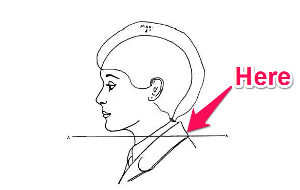 navy female hair may not fall below lower edge of back of collar