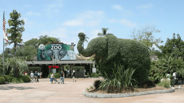 san diego zoo military discount