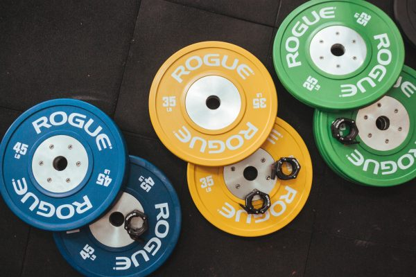 rogue fitness military discount