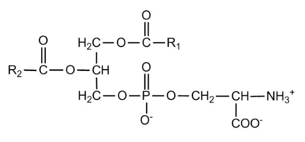 phosphatidylserine chemical makeup - mind lab pro ingredient