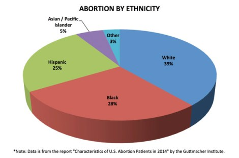 abortion-by-ethnicity