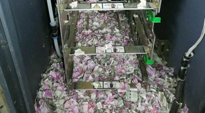 mice chew through notes worth 12.38 lakhs in Assam