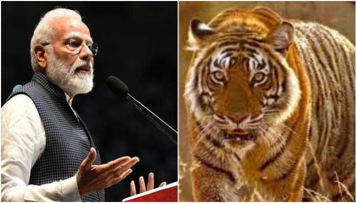 PM Modi released the results of the 2018 Tiger Census, India home to 2967 tigers