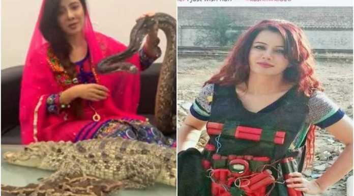 Pakistani pop singer Rabi Pirzada's private nude videos were reportedly leak soon after she criticised Pakistan's DGISPR Asif Ghafoor