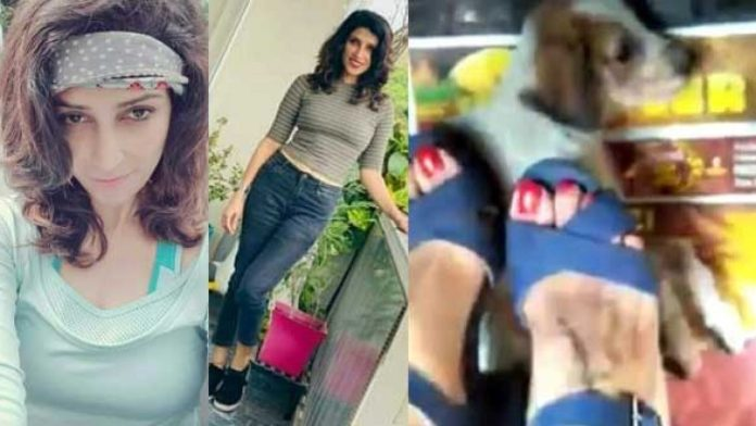 Police files FIR against Pooja Dhillon after video of her crushing her puppy goes viral on the Internet