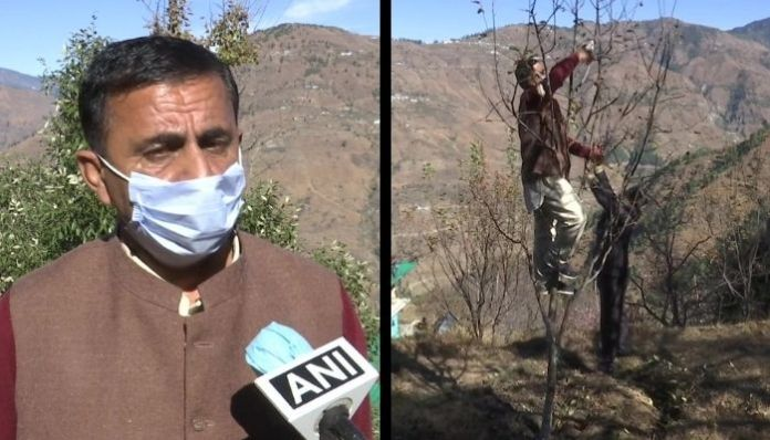 Himachal Pradesh: How private players such as Adani are helping apple farmers?