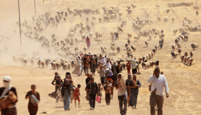 Sex slavery and genocide- Yazidis pay the price for not converting to Islam