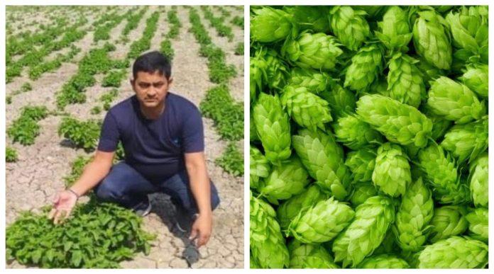 Bihar farmer ho-shoots