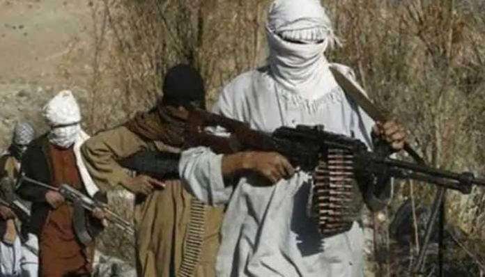 Thousands of Pakistani terrorists are active in Afghanistan to help Taliban, say reports