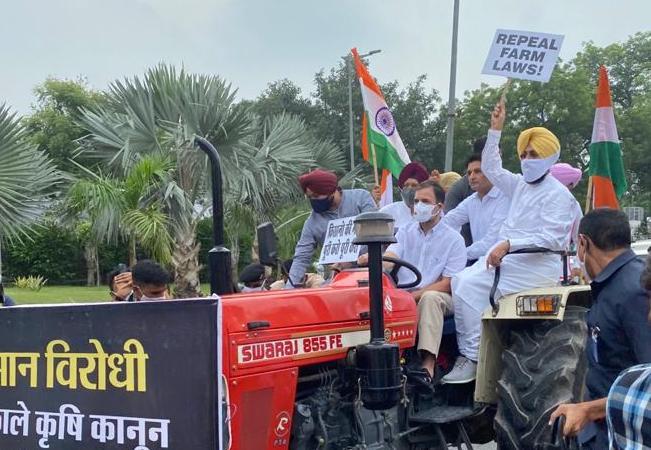 किसान आंदोलन के समर्थन में राहुल गांधी ट्रैक्टर से विजय चौक पहुंचे