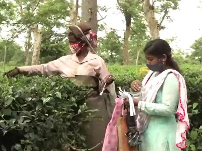 Pinki Karmakar
