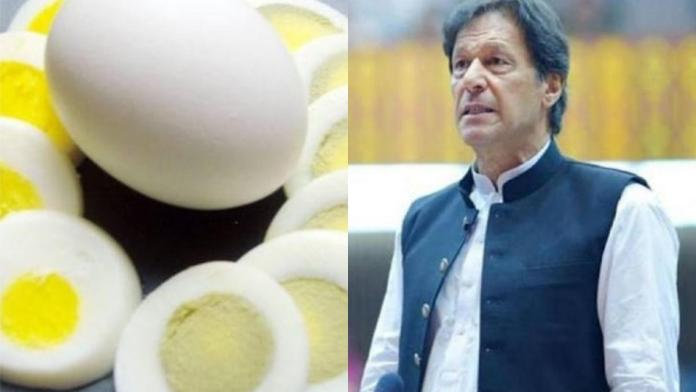 Pakistan: Imran Khan 'Murghi Paal' scheme fails, hens did not lay eggs, citizens cooked and ate them instead