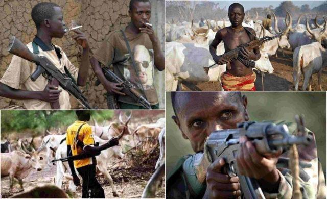Image result for killer herdsmen in nigeria