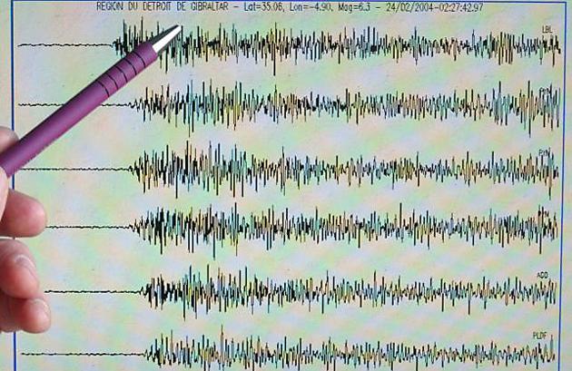 El terremoto ocurrido en el Mar de Scotia - Foto: