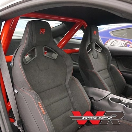 2015 2016 2017 Mustang Roll Bar Shelby GT350 S550