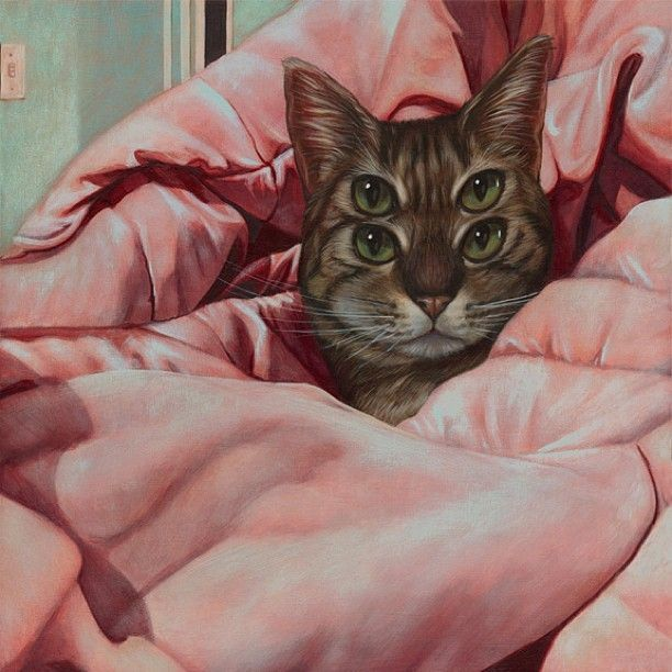 cats-weldon_11