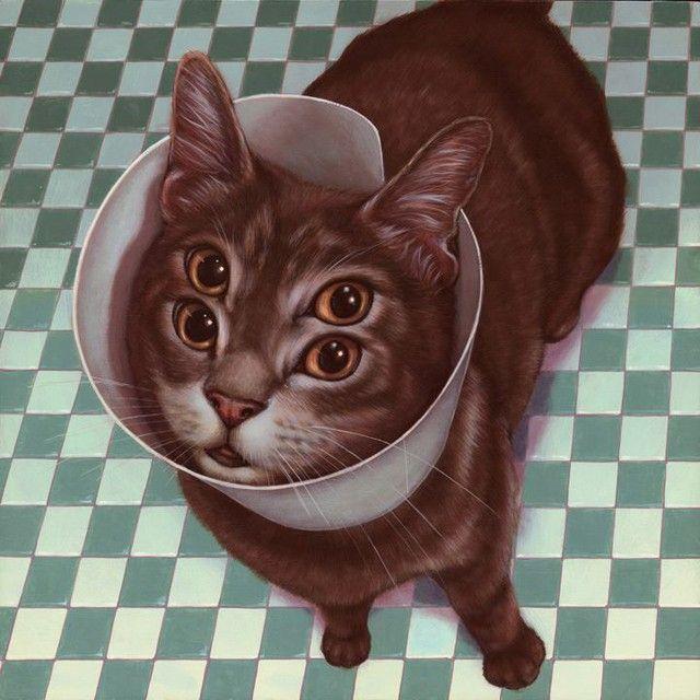 cats-weldon_2