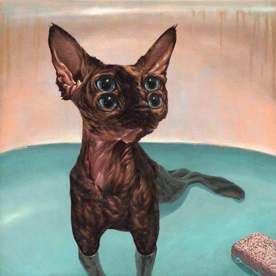 cats-weldon_6