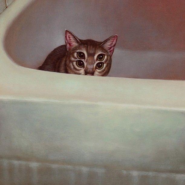 cats-weldon_7