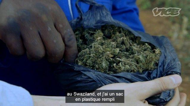 Champ de weed