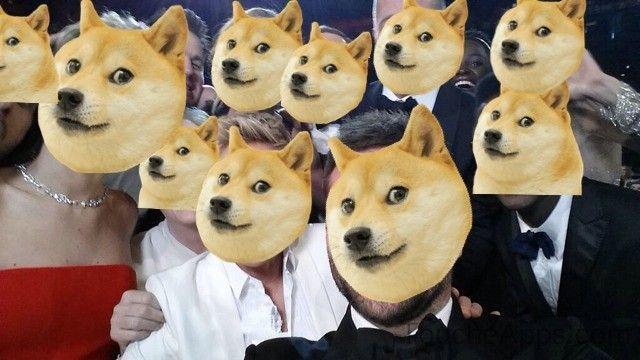 selfie chien