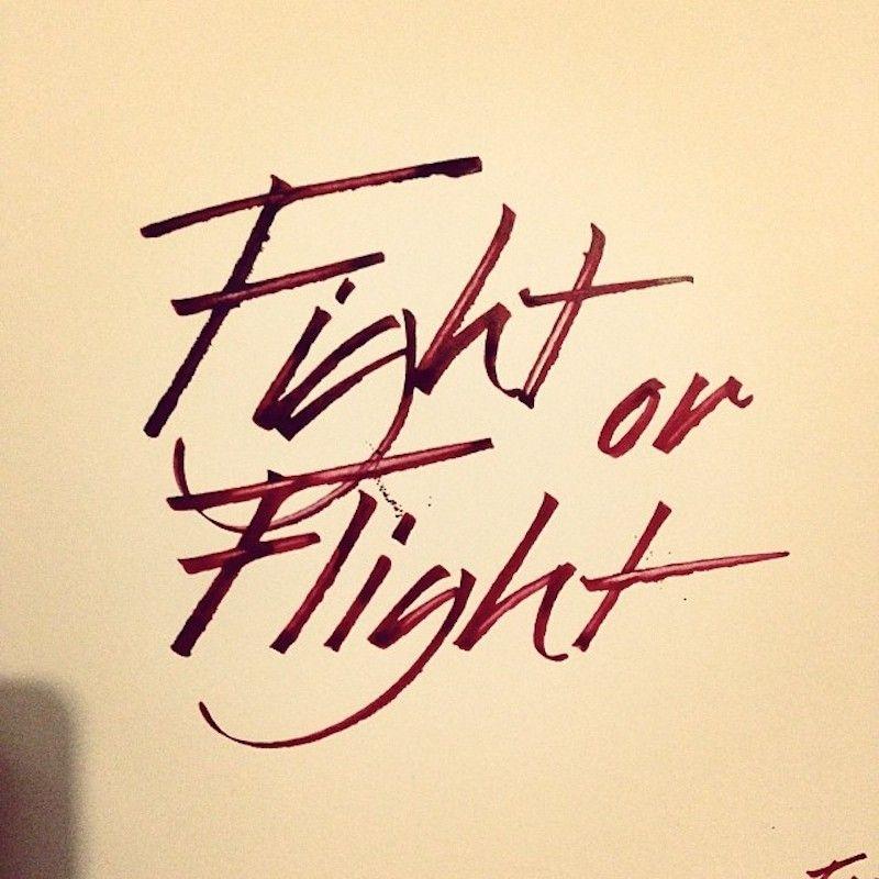 Fight or Flight Sam