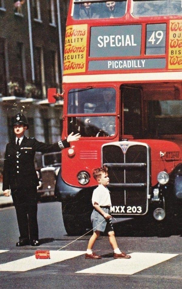 bus-mini-bus