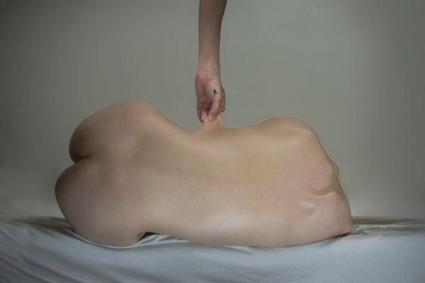 Les dimensions du corps humain
