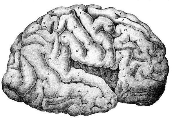 crise d schizophrénie