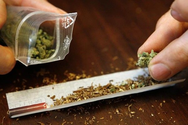 fumer hortensia