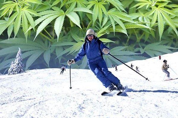 ski weed