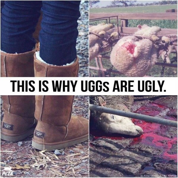 uggs are ugly