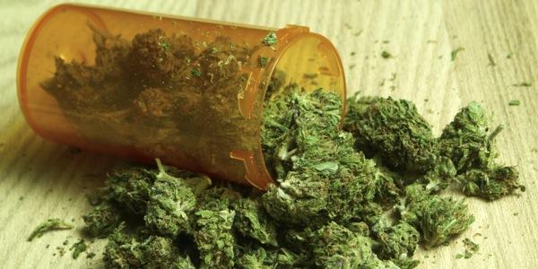 cannabis-cover1