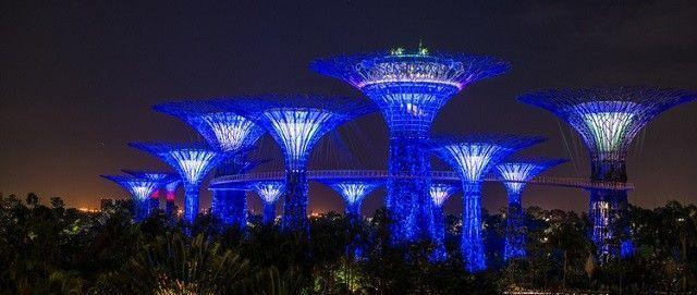 Joseph-Michael-singapore-night