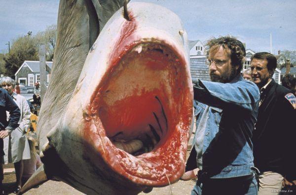 dents de la mer animaux