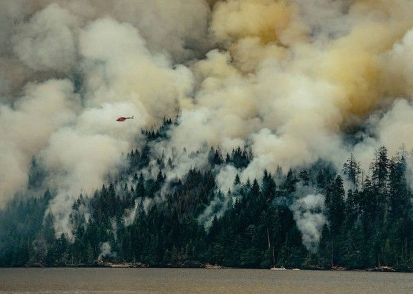 Circa-1983-Dog-Mountain-Forest-Fire-04