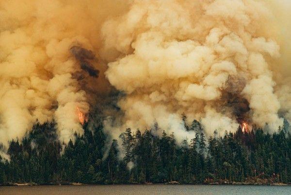 Circa-1983-Dog-Mountain-Forest-Fire-09