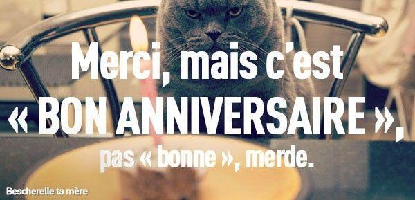 bescherelle-ta-mere-des-chatons-pour-apprendre-le-francais-a-vos-amis