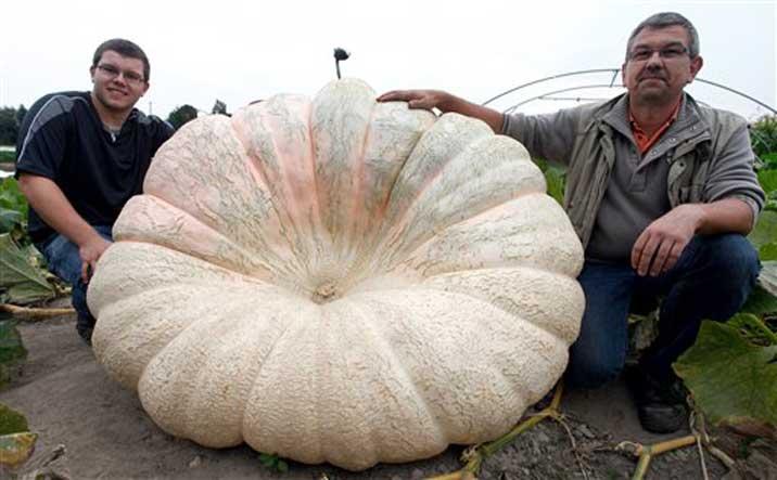 blog_photoquiz_2012_09_17_legumes