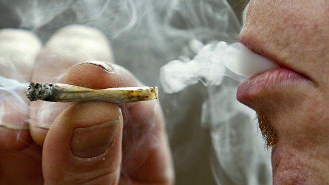 cannabis2