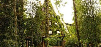 Un hôtel insolite en pleine nature chilienne