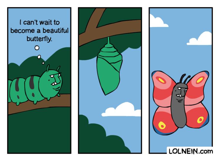 LOLNEIN