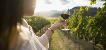 Viens découvrir les vins les plus savoureux et naturels possibles à Lyon
