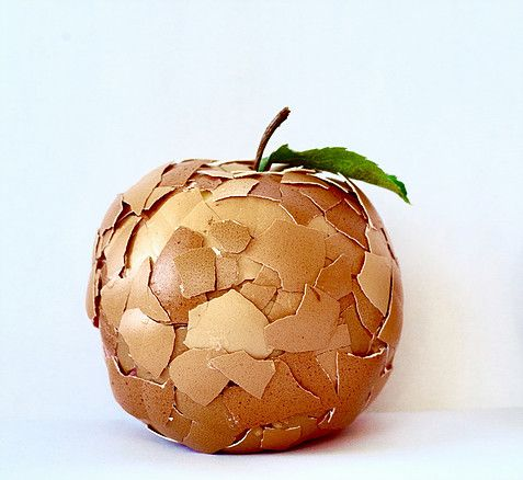 omnifood-camoufl-egg