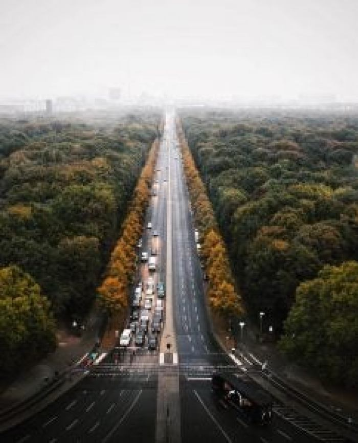 a road cuts through a gigantic park in berlin