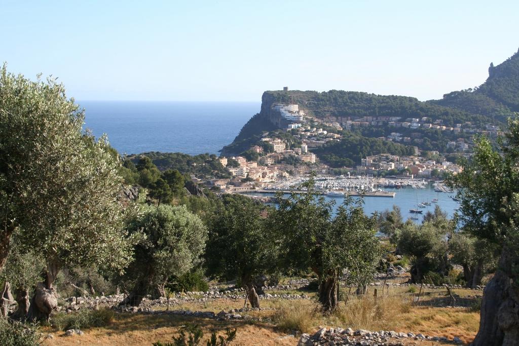 Soller: olijfbomen, sinaasappels en folklore op Mallorca