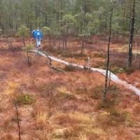 Ochtendwandeling in Örebro, Zweden