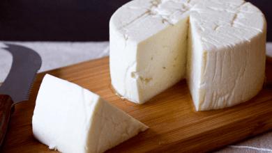 Photo of El TLCUEM abriría oportunidades para exportar quesos de México a la UE: Canilec