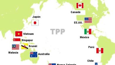 Photo of Países del TPP importan US335,000 millones en alimentos