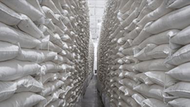 Photo of Guajardo duda que se logre un nuevo acuerdo de azúcar con EE.UU.